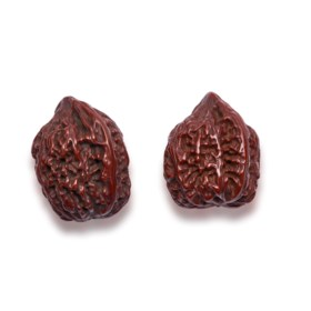 A FINE PAIR OF UNCARVED WALNUTS