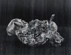CHU CHU (B. 1975)