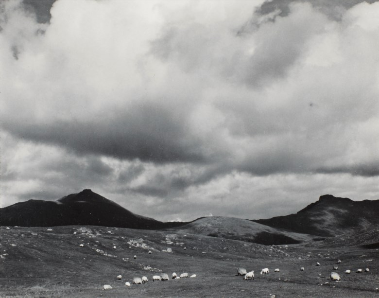 Paul Strand (1890-1976), Sheep on the Moor, South Uist, Hebrides, 1954. Sheetflush mount 5 x 6¼  in (12.6 x 15.9  cm). Estimate $12,000-18,000. This lot is offered in Photographs on 2 April 2019 at Christie's in New York