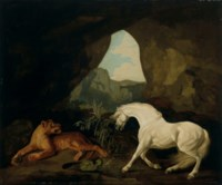 A lioness and a horse in a cave