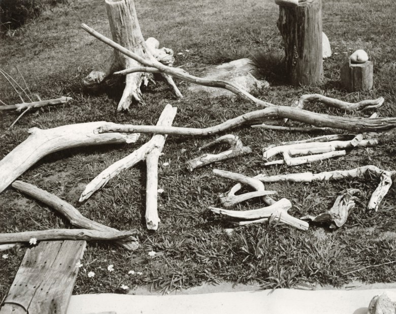 Andy Warhol (1928-1987), Driftwood on Grass, 1983. Unique gelatin silver print. 8 x 10 in (20.3 x 25.4 cm). Estimate $2,000-3,000. Offered in Andy Warhol Better Days, 28 April to 6 May 2020, Online. Artwork © 2020 The Andy Warhol Foundation for the Visual Arts, Inc.