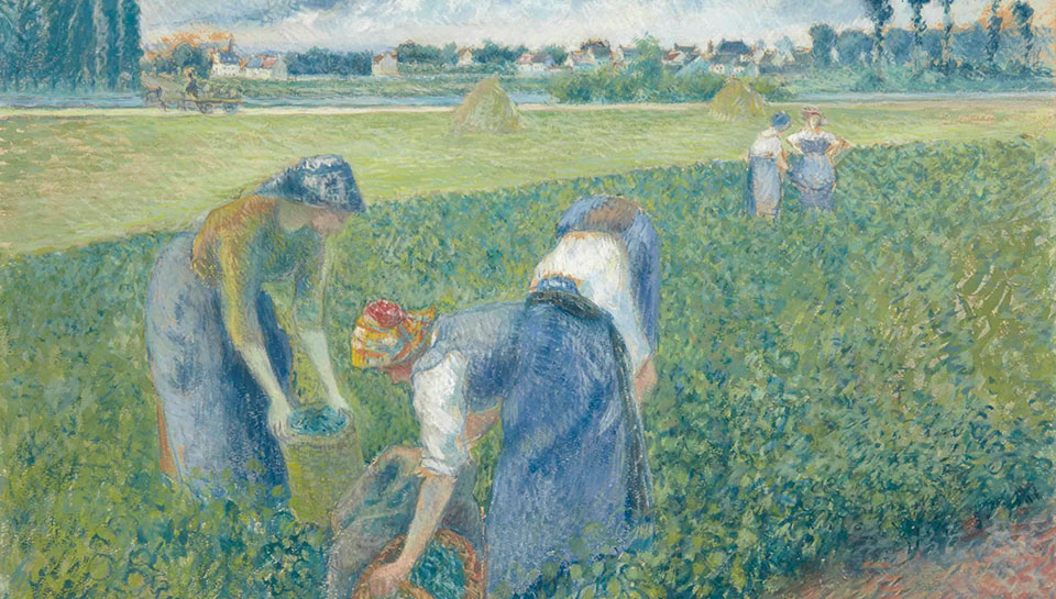 Camille Pissarro Reaping the rewards