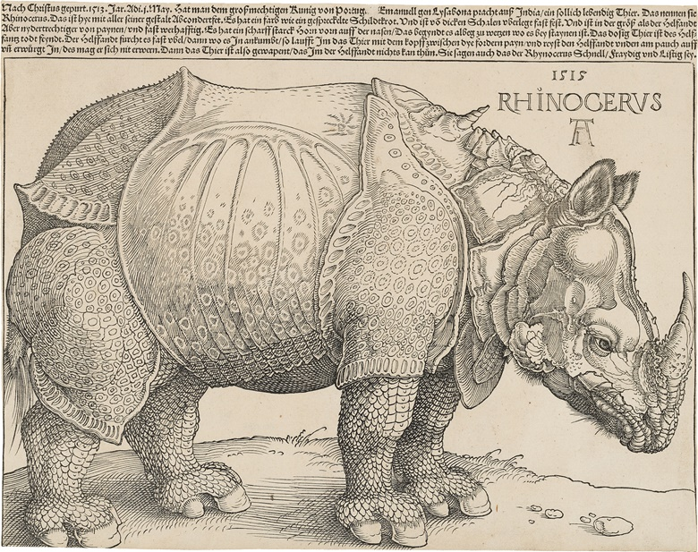 Albrecht Dürer, The Rhinoceros (B. 136; M., Holl. 241; S.M.S. 241), 1515. Woodcut with letterpress text, 1515, watermark Anchor in Circle (M. 171), a very good impression of this rare and important woodcut, first edition (of eight), with the complete letterpress text above, with thread margins or trimmed to the borderline at left and right, trimmed just inside the borderline below and to the